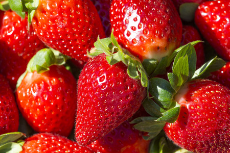 juicy: background of red and juicy ripe strawberries Stock Photo