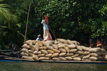 allepey: Indian man transport dwell with rice on the channel for boats. Allepey backwaters canoe in Kerala state, India. Kochin