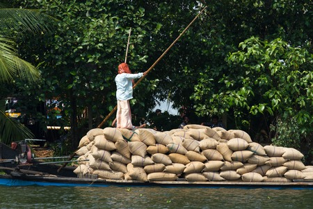 allepey: ALLEPPEY, KERALA, INDIA, MARCH 31, 2015: Some man transport dwell with rice on the channel for boat