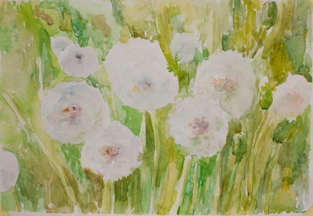 art painting: Fluffy dandelion artist paint. Hand drawn green watercolour art painting