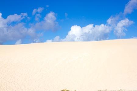 desert ecosystem: Slope hill sand on yellow dunes on blue sky background. Sustainable ecosystem. Canary island, Fuerteventura