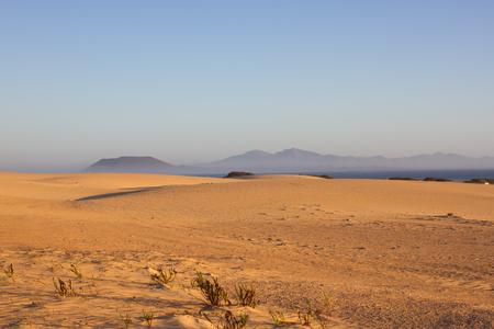 desert ecosystem: Slope hill sand on yellow dunes on blue sky background. Sunrise, morning. Sustainable ecosystem. Canary island, Fuerteventura Stock Photo