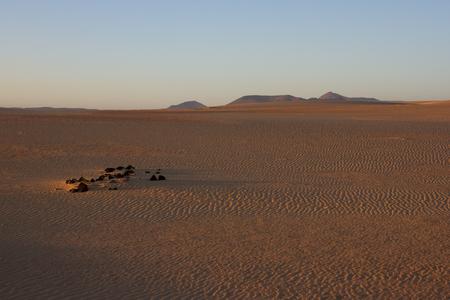 Slope hill sand on yellow dunes on blue sky background. Sunrise, morning. Sustainable ecosystem. Canary island, Fuerteventura Stock Photo
