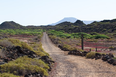 Dirt road in Spain, Canarian islands. Dividing line. Bicycle track