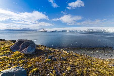 Half moon bay, South Shetland Islands harbor view with Deschampsia antarctica hair grass vascular plants Reklamní fotografie