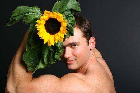 sunflower man look at you sight photo