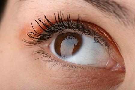 dilate: beauty brown eye looking up
