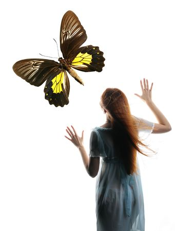 Girl in butterfly night colored dream Stock Photo - 2486330