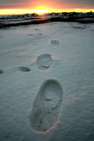 footprint on white snow men go to sun Stock Photo - 2613345