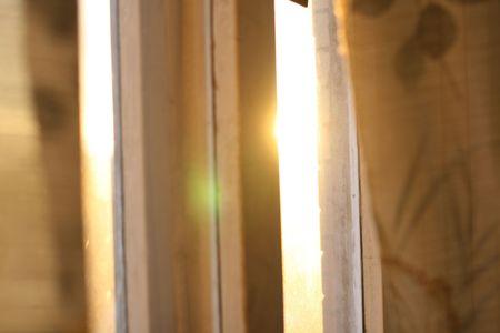 early morning sun in my window photo