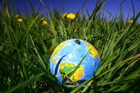 globe of planet earth in green grass Stock Photo - 3139052