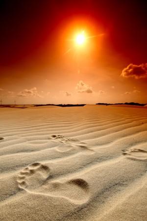 footprint on desert sand Stock Photo - 4212453