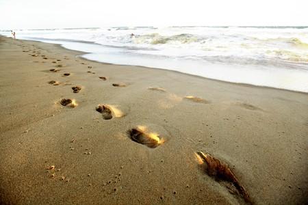 ocean footprints on sand near water photo