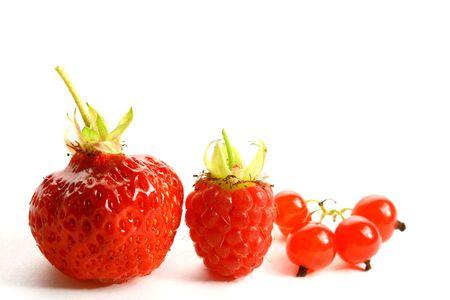 sugary: wild berry isolated on white background