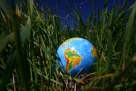 globe of planet earth in green grass  Stock Photo - 4995451