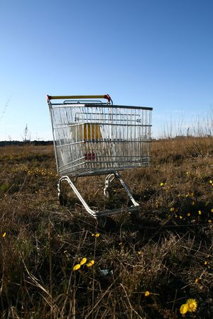 go shoping cart to the forest nature concept photo