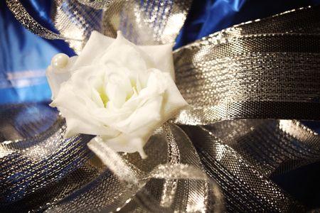 gift bow macro close up Stock Photo - 5020414
