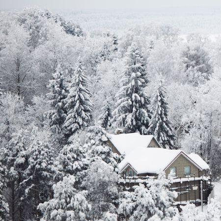 bosque con nieve: casas en invierno la nieve de bosque alrededor de Foto de archivo
