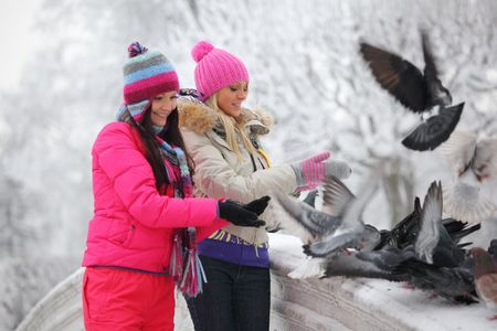 hat with feather: winter women give food to the pigeon Stock Photo