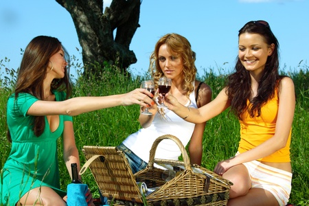 very fun girlfriends on picnic  Stock Photo - 8415532