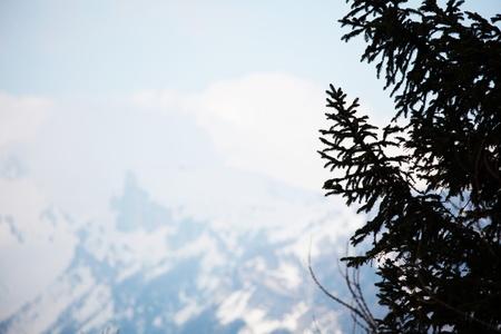spring alps mountains scene background Stock Photo - 8453739