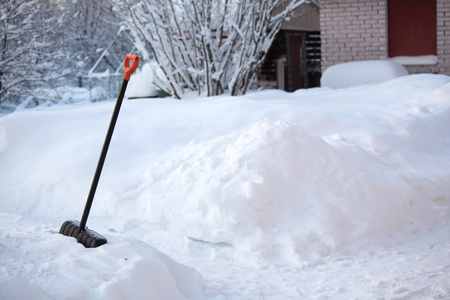 shovel in snow on nature photo