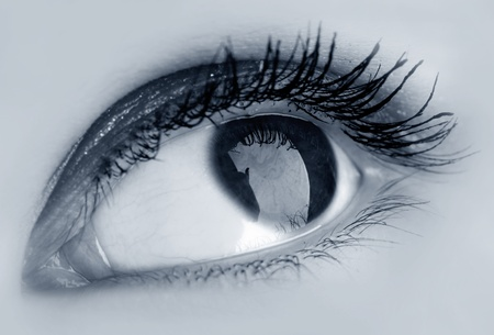 dilate: beauty blue eye see at you