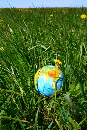 globe of planet earth in green grass  Stock Photo - 8516752