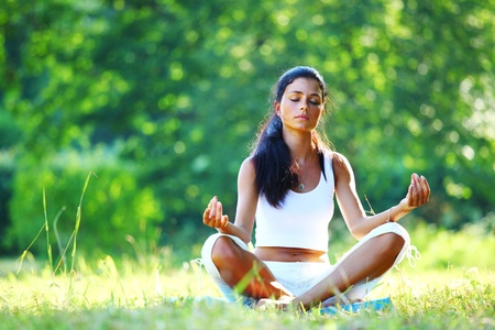 yoga woman on green grass in lotus pose Stock Photo - 8587425