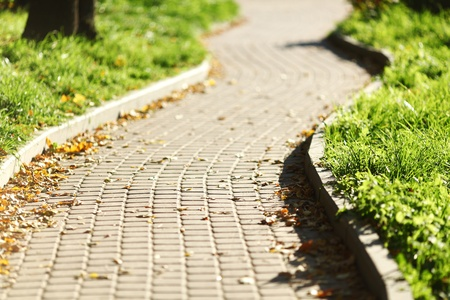 road in autumn park close up Stock Photo - 8675897