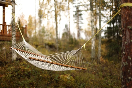 hammock in forest close up photo