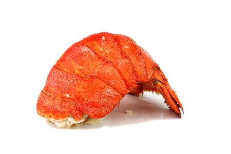 lobster tail: lobster tail isolated on white Stock Photo