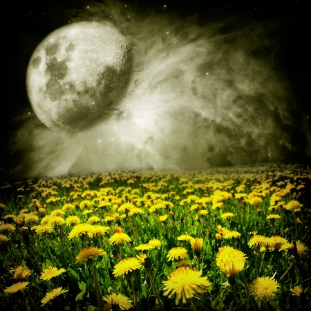 Moon over dandelion field in abstract world of the dreams photo