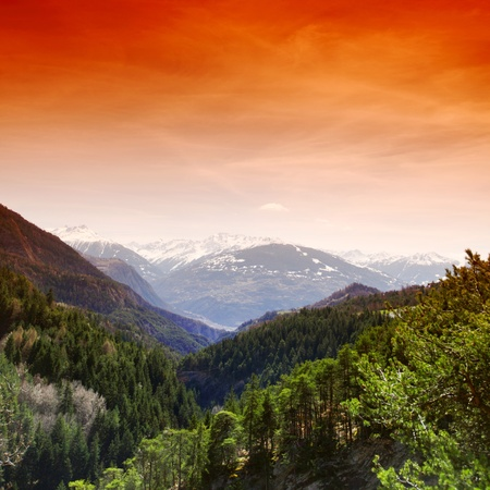 alpen: alpen mountain forest sun shine Stock Photo