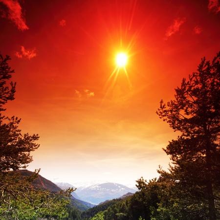 alpen mountain forest sun shine photo