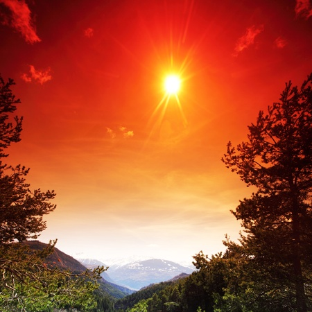 alpen mountain forest sun shine Stock Photo - 8822949