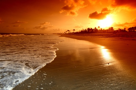 beach sunrise: landscape ocean sunrice golden sky