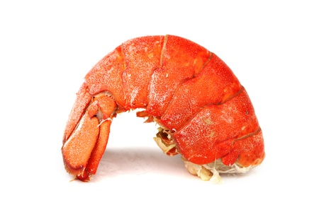 lobster tail isolated on white photo
