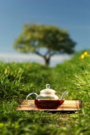 Natural tea in the pot