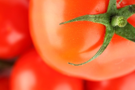 tomato background macro close up Stock Photo - 9068076