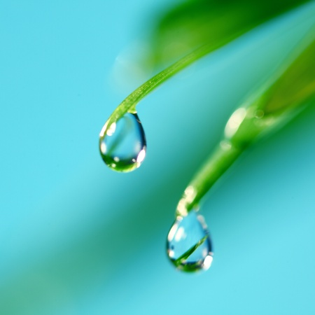 big water drop on grass blade Stock Photo