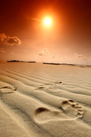 desert footprint: footprint on desert sand