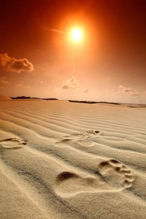 footprint on desert sand photo