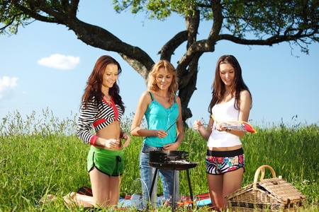 very fun girlfriends on picnic cook  Stock Photo - 9130849