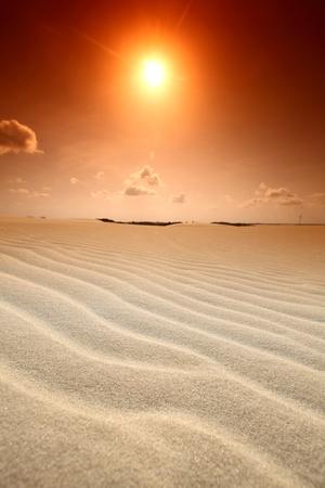 extreme heat: desert sand under blue sunny sky Stock Photo