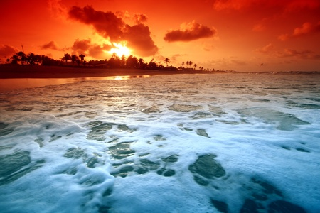 landscape ocean sunrice golden sky photo