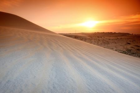 desert sand under sunset sky Stock Photo - 9357070