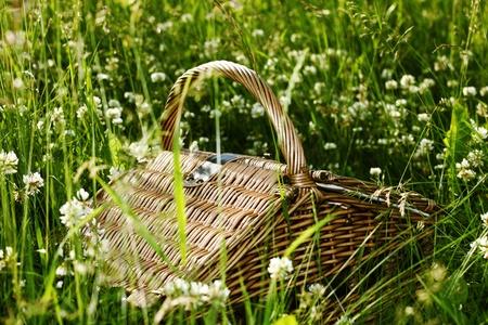 picnic basket in green grass photo