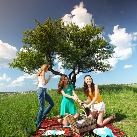 girlfriends on picnic in green grass Stock Photo - 9707102