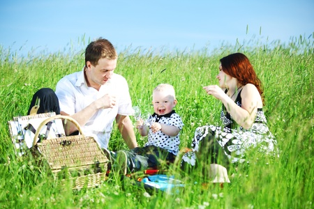 happy family on picnic in green grass Stock Photo - 9889343